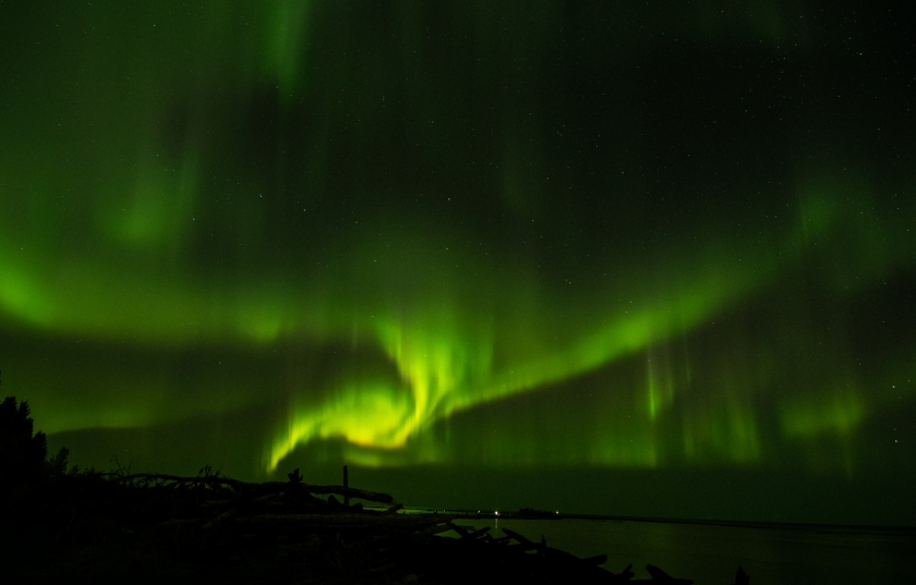 Bright green arms of the Aurora Borealis spread across the starry sky over Great Slave Lake.
