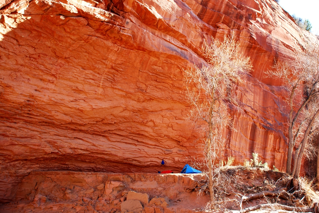 A small blue tent sits on a ledge below a sweeping orange wall streaked with brown.