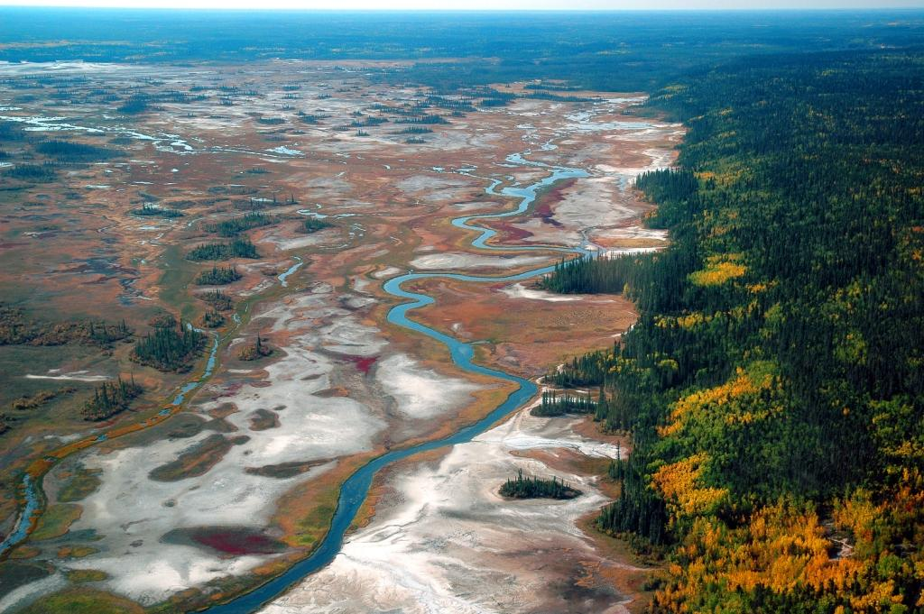 View of the Salt Plains, with a stream winding through flats that have white splotches, red blooms of salt plants, and a dark green and gold forest lining the right side.